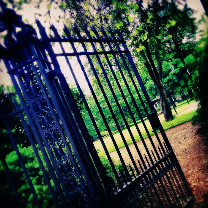 Photo of an iron gate opening into a garden.