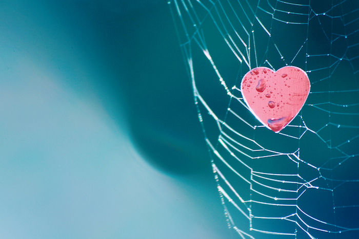 Heart-shaped metallic logo caught in a spider's web.