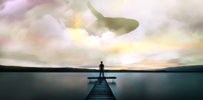 A whale pictured, jumping in the sky as someone looks up at it from the end of a dock over water.