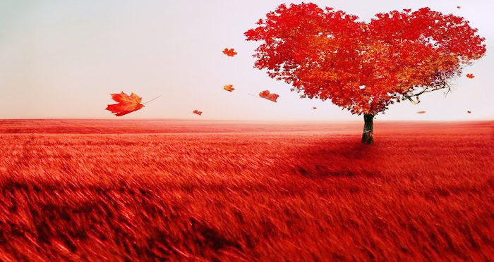A heart-shaped, bright red tree on the horizon line, in a bright red field.