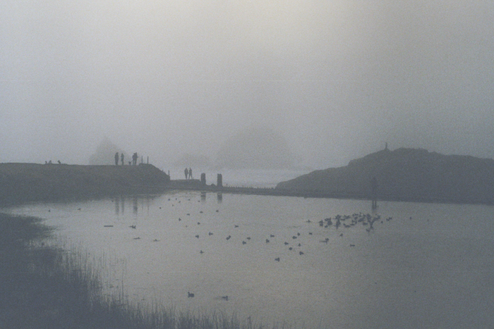 A pond or small lake on a foggy day: ducks and people standing along the water are dimly visible.
