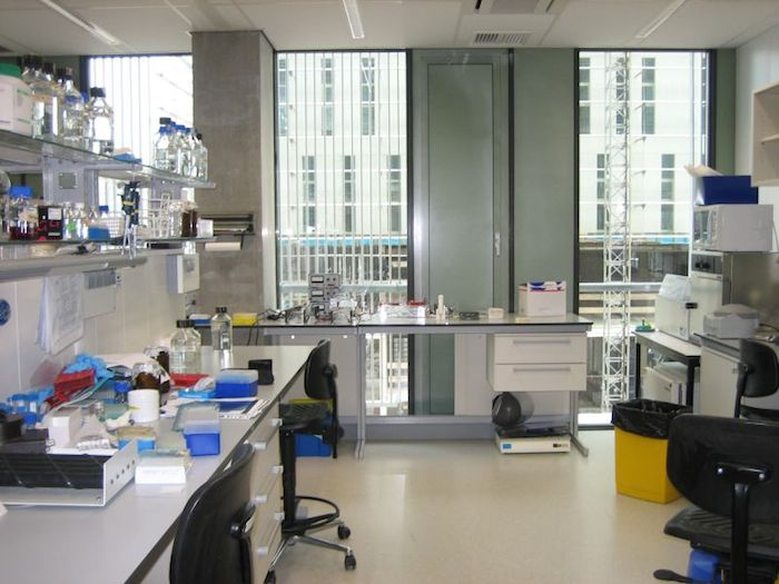 A science lab, with scientific equipment lined on the counters and open windows.