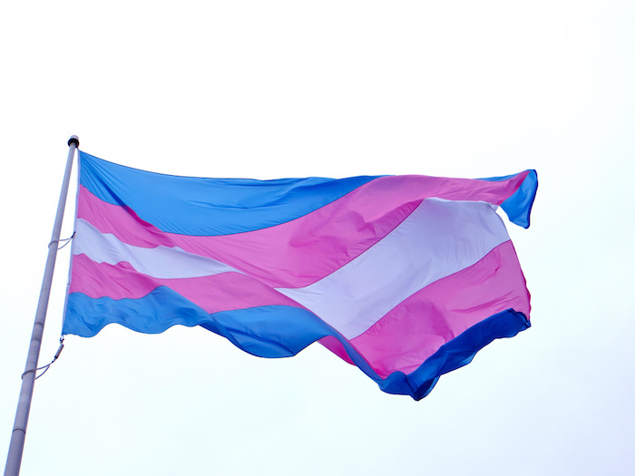The trans flag flying in a pale blue sky.