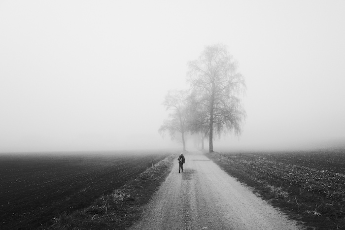 A person walking alone on a foggy country road, a lone tree dimly appearing from the mist.
